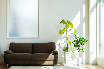 house_studio.jpg